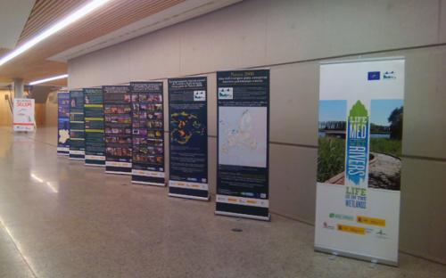 4/12/2015. Utilización en el XII Congreso de la Sociedad Española para la Conservación y Estudio de los Mamíferos (SECEM). Fórum de la Evolución de Burgos.